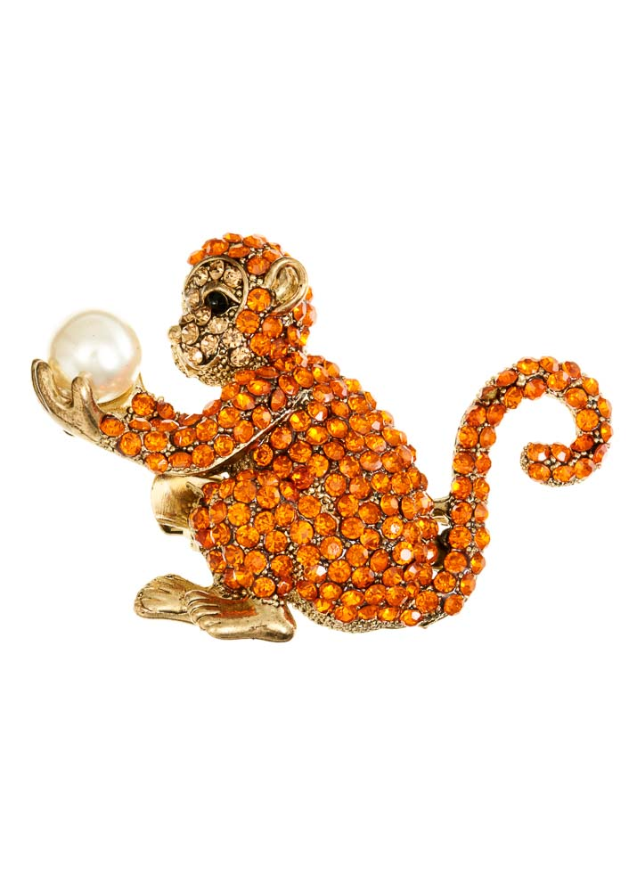 Magical Monkey Hairclip & Brooch