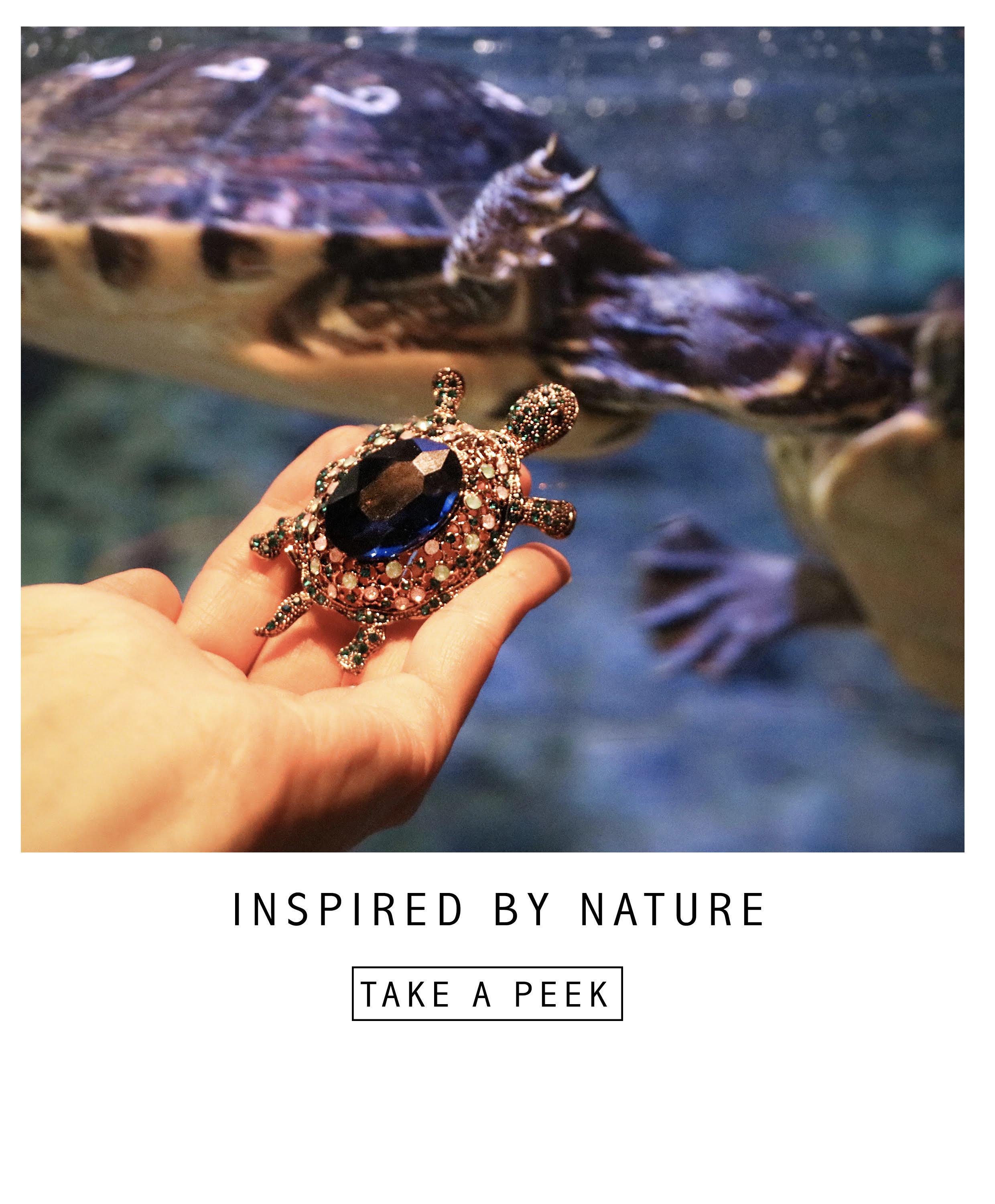 Brooches Inspired by Nature